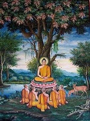 Buda 7